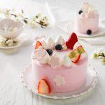 파리바게뜨, 벚꽃향 담은 '베리 봄봄 케이크'