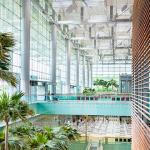 싱가포르 쉐이크쉑 사업권 획득