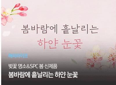 [해피라이프] 벚꽃 명소&SPC 봄 신제품 봄바람에 흩날리는 하얀 눈꽃